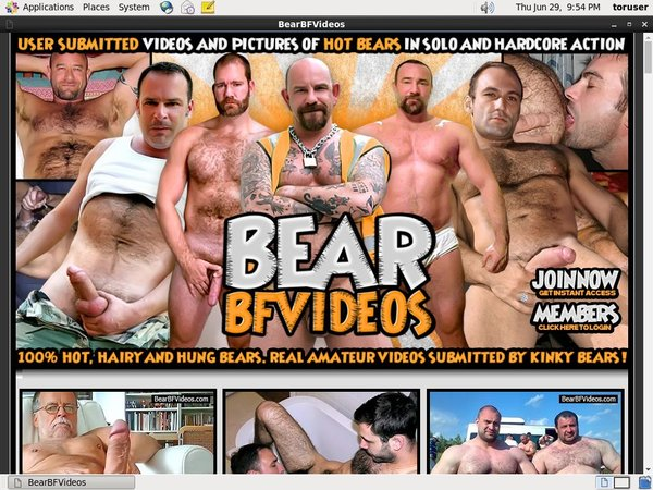 Bearbfvideos Paypal Order